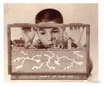 恶补童年:玩过这些玩具的或许会有个不一样的未来