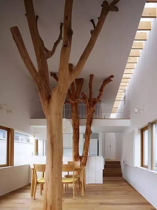 设计师装饰仅用一棵木头,绝对可以成为家装的点睛之笔。