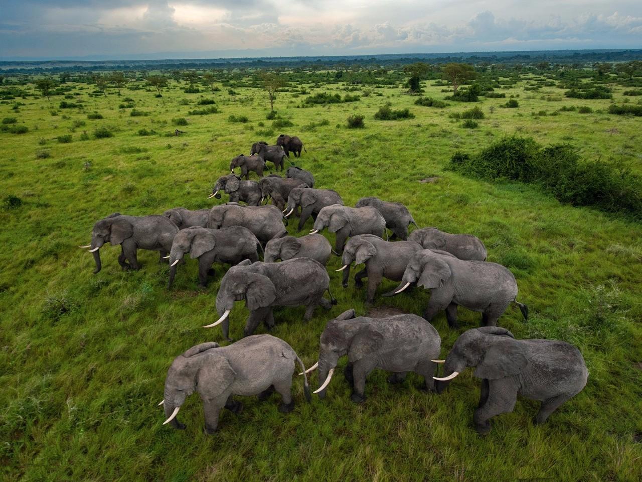 7月旅行灵感|睛彩非洲,恣意挥洒的性感 和无可救药的浪漫