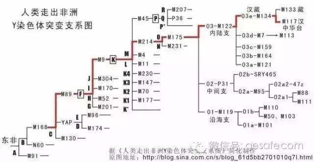 中国人从何而来? 人类迁移路线图 | 檀闲篇