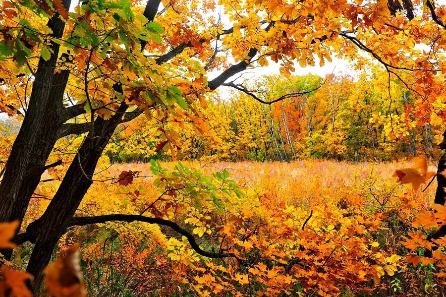 五花山,5条路线带你走进秋天的神话