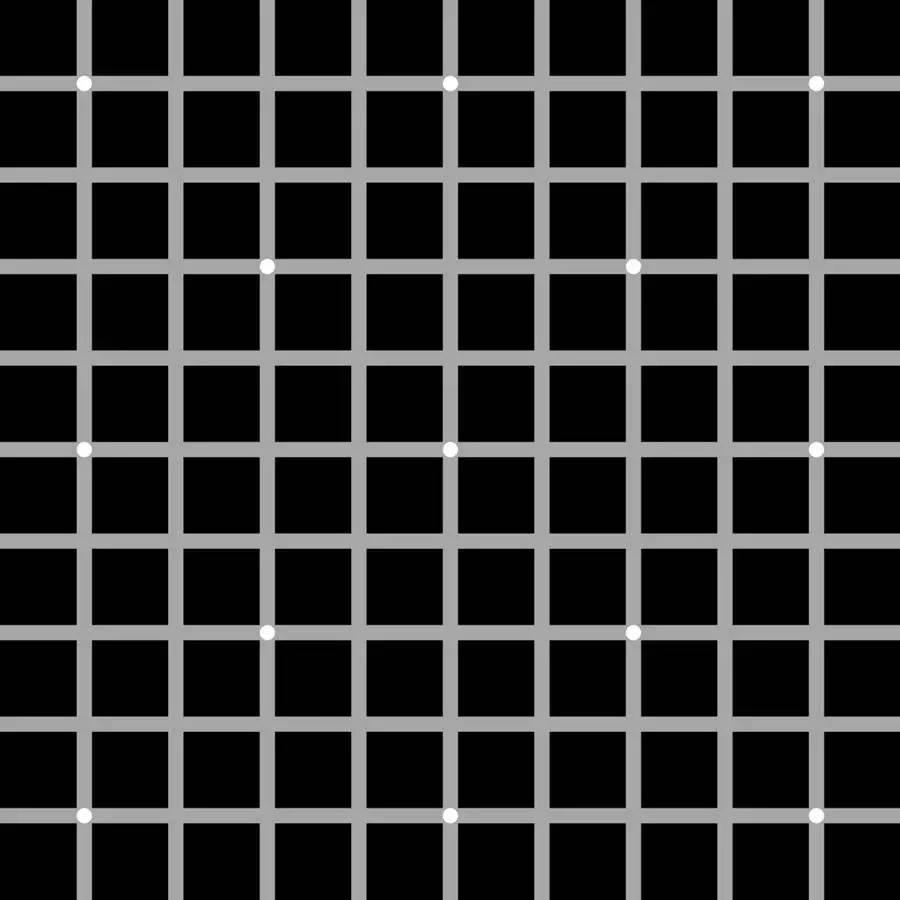 抓狂:12黑点的错觉