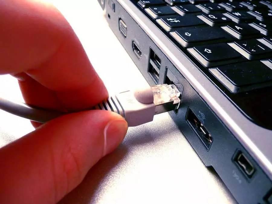 没有小黄片,互联网什么都不是 | 浪潮工作室
