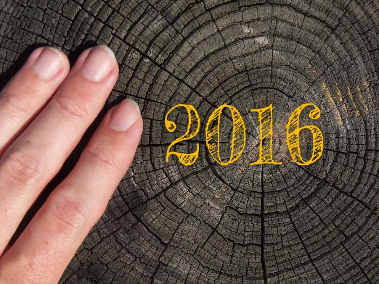 2016年点赞最多的88篇文章:有你错过的吗?