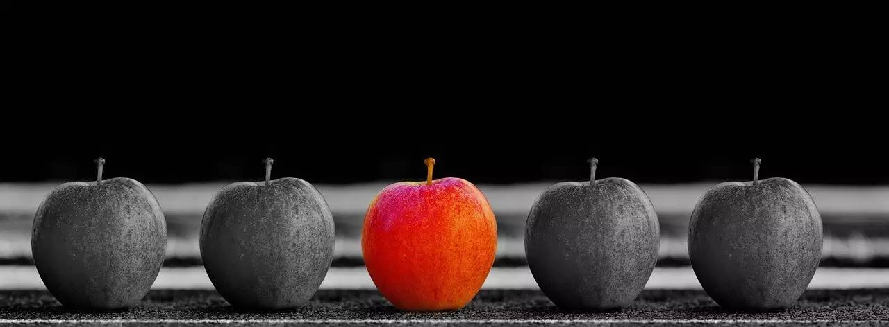 你的人格完善程度决定着你的发展高度