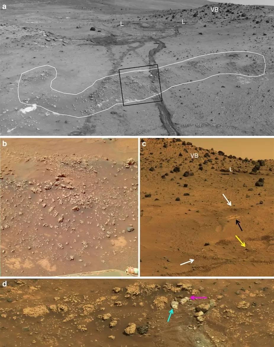 勇气号立功了 可能找到了火星生物的遗迹