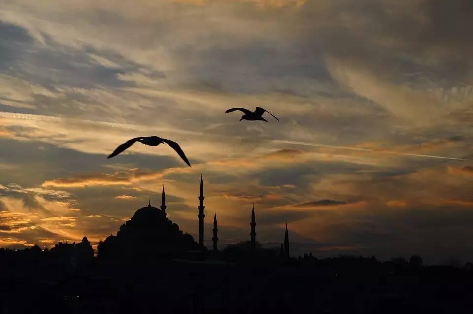带一本书去伊斯坦布尔 | 单读 Classics 优秀书评奖结果揭晓