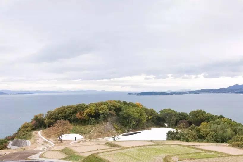 这个日本美术馆开馆6年,不展一件艺术画作,却吸引了全球无数访客