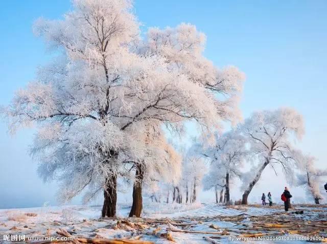 世界上那些美到令人窒息的雪景!