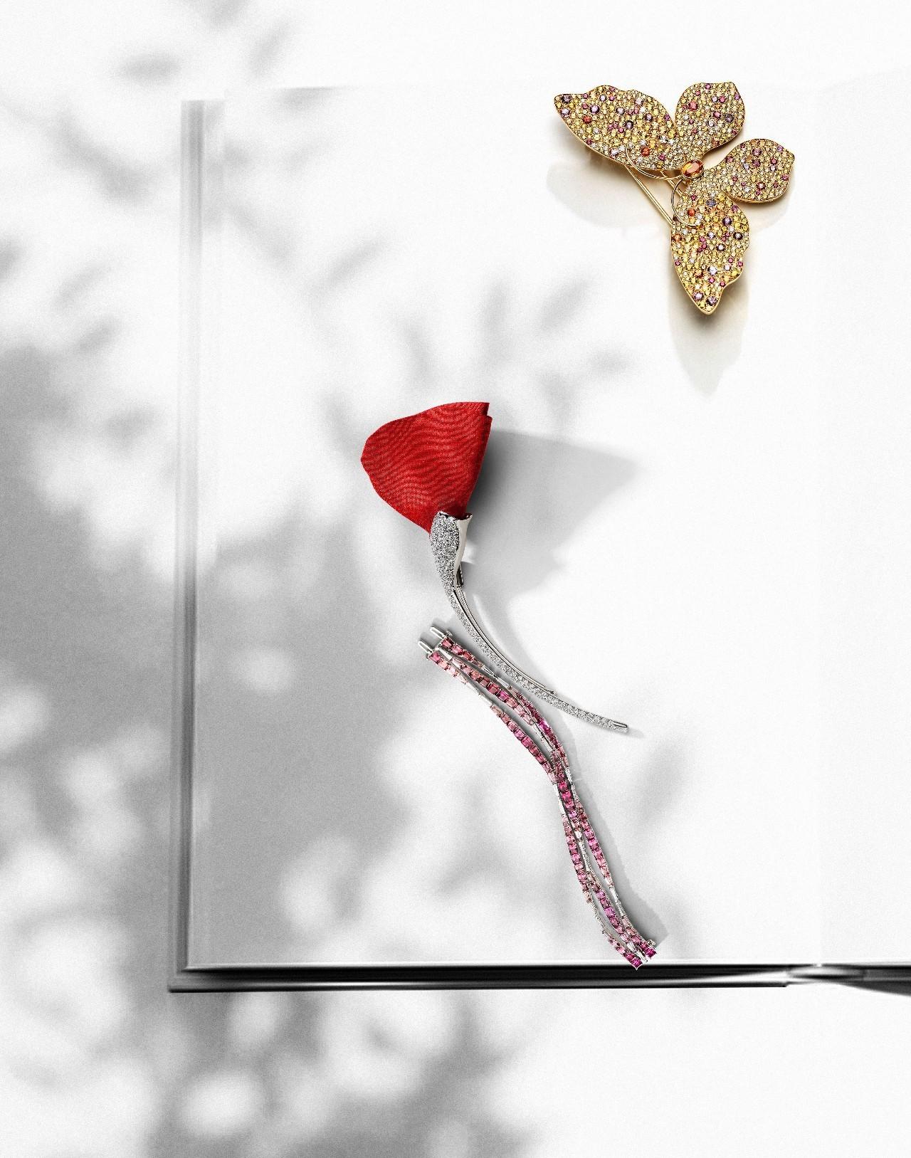 百宝箱 | 秋影下的稀世珠宝,谱写一首优雅的幻忆之歌