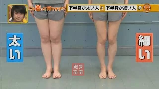 岛国最新研究:体重都一样为什么你的腿就粗?