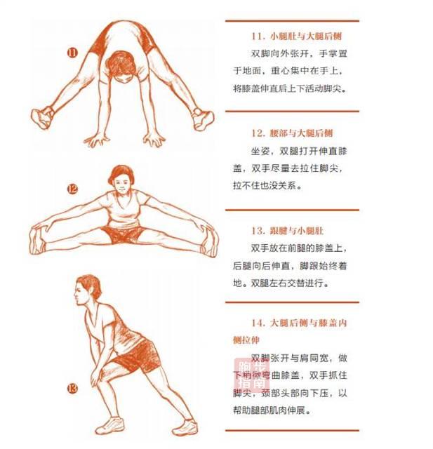 答疑   跑前跑后的拉伸如何做?做多长时间合适?