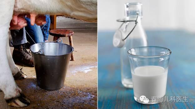 牛奶or豆浆,哪种更健康?