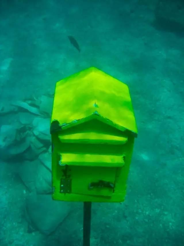 潜水、观鲸、海钓、探险,你最爱哪个?去全球最美的10个免签海岛都能找到!
