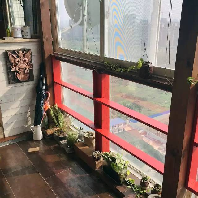 设计师小白和他一个阳台的五年时光~ (下集)